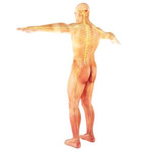 autoimmune disease pain reduction therapy